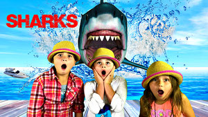 sharks for kids, great white shark, shark facts