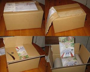 Der Karton wird geöffnet