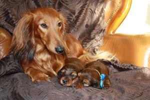 Stolze Mama Fenja mit ihren Kindern