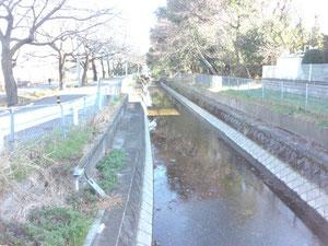 学校裏の見沼代用水です。