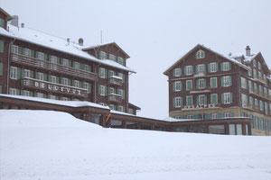 Scheidegg-Hotels Bellevue Des Alpes