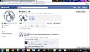 """Me gusta"" en Facebook"