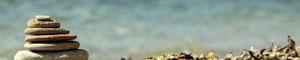 Walsumerschnauzen Fly und Happy