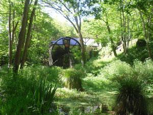 L'étang près du moulin