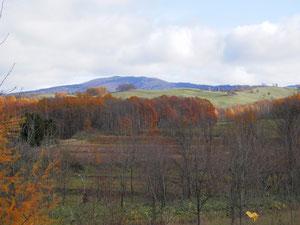 初冬の丸加高原です