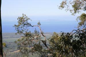 Aussicht im Paluma NP