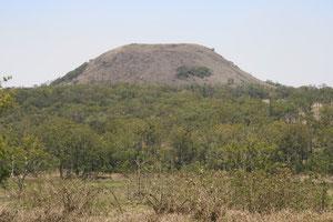 Mount Fox