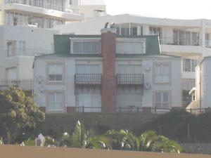 Mein Haus vom Strand aus fotografiert :) Die linke Terasse ist meine :)