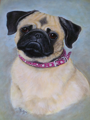 Dieses tolle Bild hat Monika Buchholz (Tierportraitmalerin) gemalt!