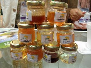 Mieles de origen brasilero presentadas en APIMONDIA 2011