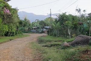 Die Hauptstraße durch Longo Mai