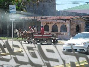 Auf den Strassen von Honduras gibt es auch noch echte Pferdestaerke!