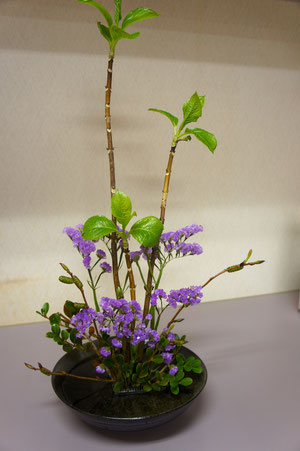 ikebana this week