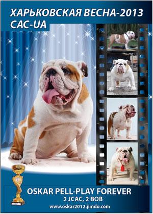 Плакат Оскара в каталоге выставки