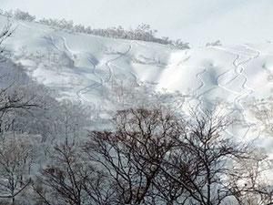 登り返しの途中から叺谷のシュプール。私達のは、もっと左で写っていません