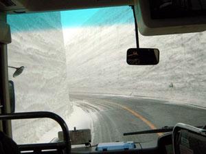 今年の雪の壁は16m