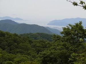 駒ケ岳山頂から50m程トレイルを進むと若狭の海が見えます