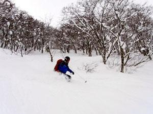 小さな谷を滑るS水さん。軽い雪でしたね