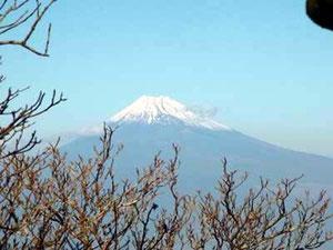 万二郎岳山頂から富士山アップ