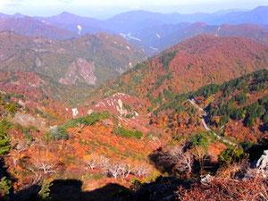 石川県側のスーパー林道の紅葉