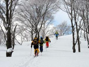 雪化粧の木々の中を登る