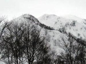 シャクナゲ平から荒島岳