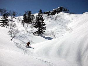山頂直下の小さな沢での滑降。快適