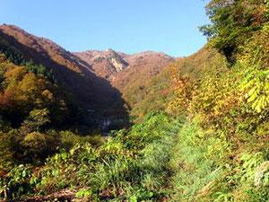 登山道は白山スーパー林道料金所前を左に