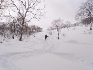 大日谷を気持ち良く滑降、N村さん