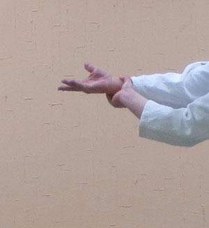 ③外入り身転換で魄氣の結び 母指先は右半身の外側に向き一回転した