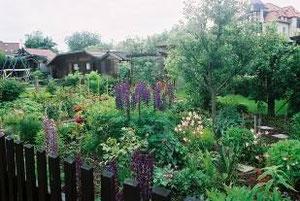 ライプチッヒ市民農園
