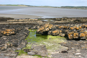 Rosses Point 2011