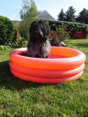 Ich bin klein, mein Herz ist rein und mir gehört der Pool allein.....