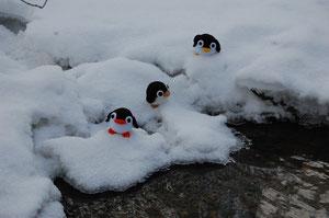 niedlicher Pinguin zum Dekorieren u. liebhaben.