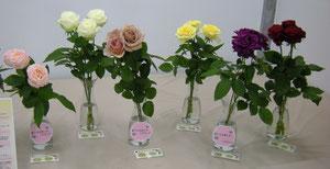 5月24日 ピンクマークは香りの強い品種