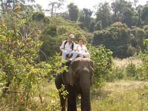 Auf Elefantenrücken durch den Dschungel