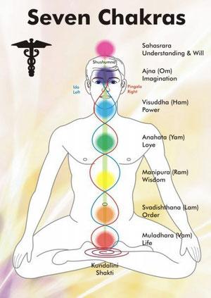 Cet équilibre là, aligné et acquis avec les quintessences florales