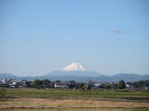 家から見た富士山