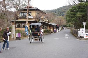 人力車、さすが京都ですね~