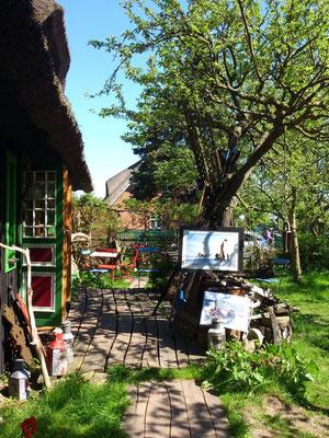 Kunst & Leben, in Althagen