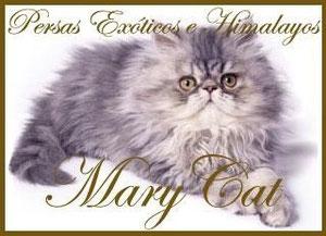 marycat.jimdo.com