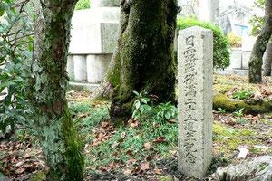日露戦役満二十五周年記念植樹