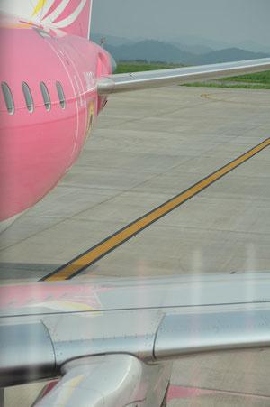 ピンクの飛行機でかわいい!