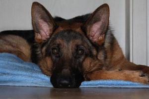 Kira 13 Monate