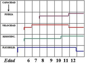 Gráfico período cualidades físicas