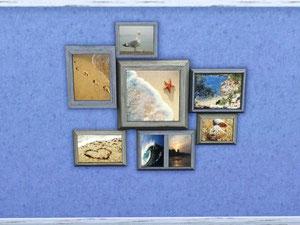 Tableaux aux motifs marins (Cliquez sur l'image)