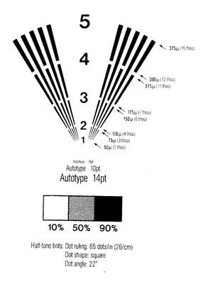 Рис.4. Тест - фотоформа для определения растискивания печати