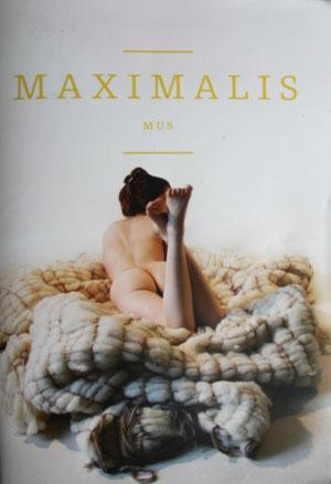 """Martin Naber im Rundgangsmagazin """"Maximalismus"""" der Kunstakademie Düsseldorf, 2013"""