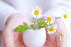 手のひらのうえの卵型のちいさな一輪挿し。活けられた白い花。