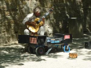 Gitarrist unter Platanen (foto Axel Gebert picomedia)A)